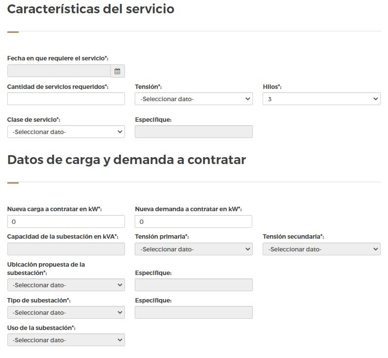 formulario caracteristicas del servicio y datos de carga